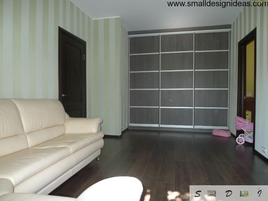 Living room closet in a niche