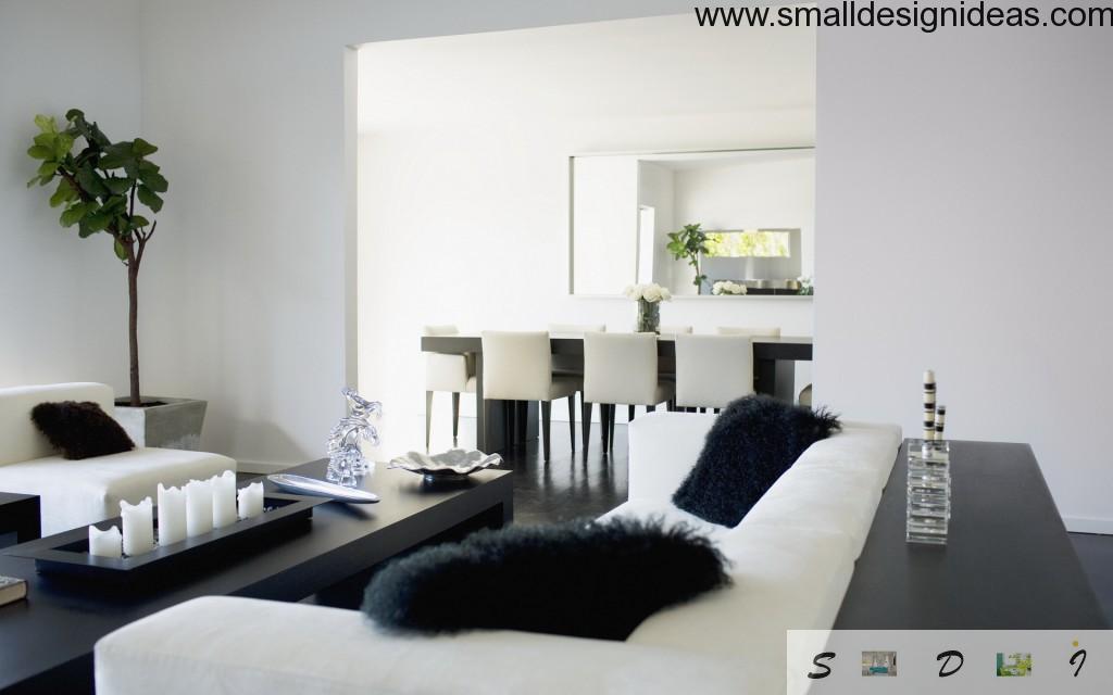 Black & White living room interior