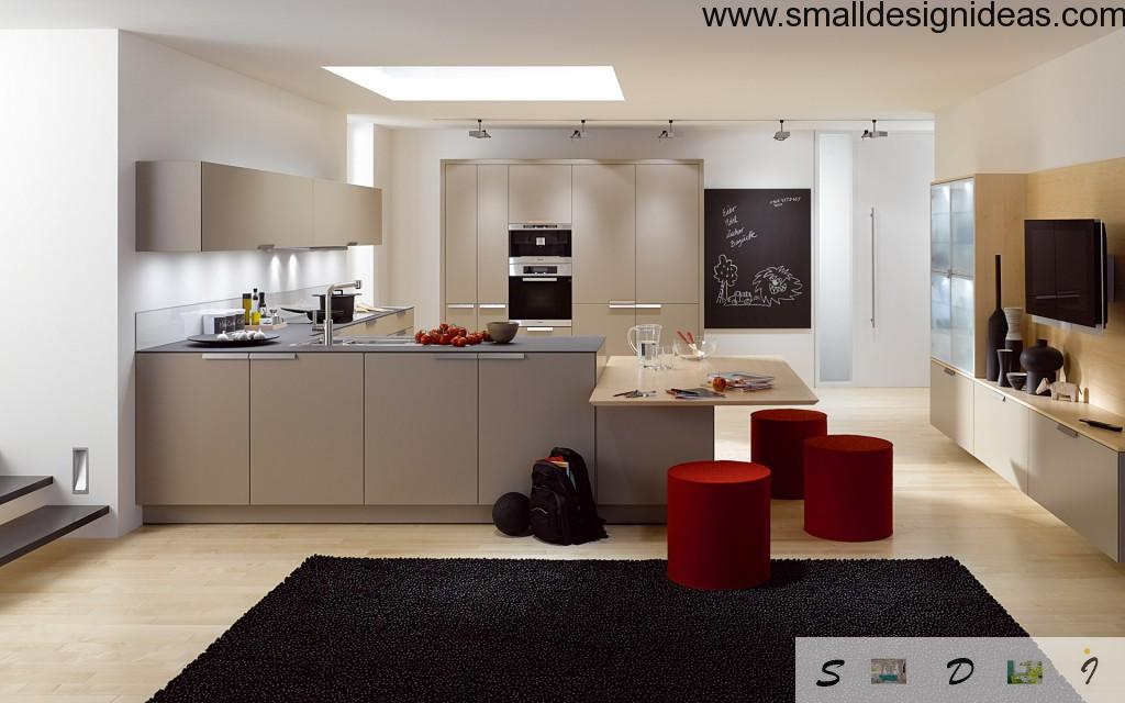Ergonomics in the modern kitchen with working and dining zone