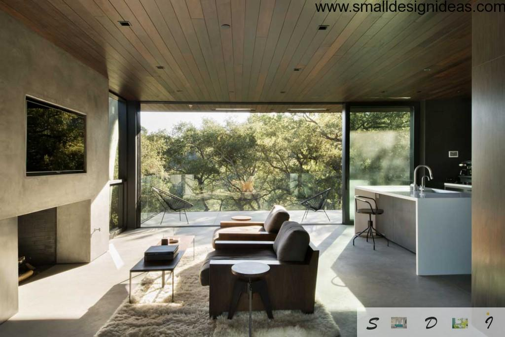 Glass wall and modest furnishing in eco living room style