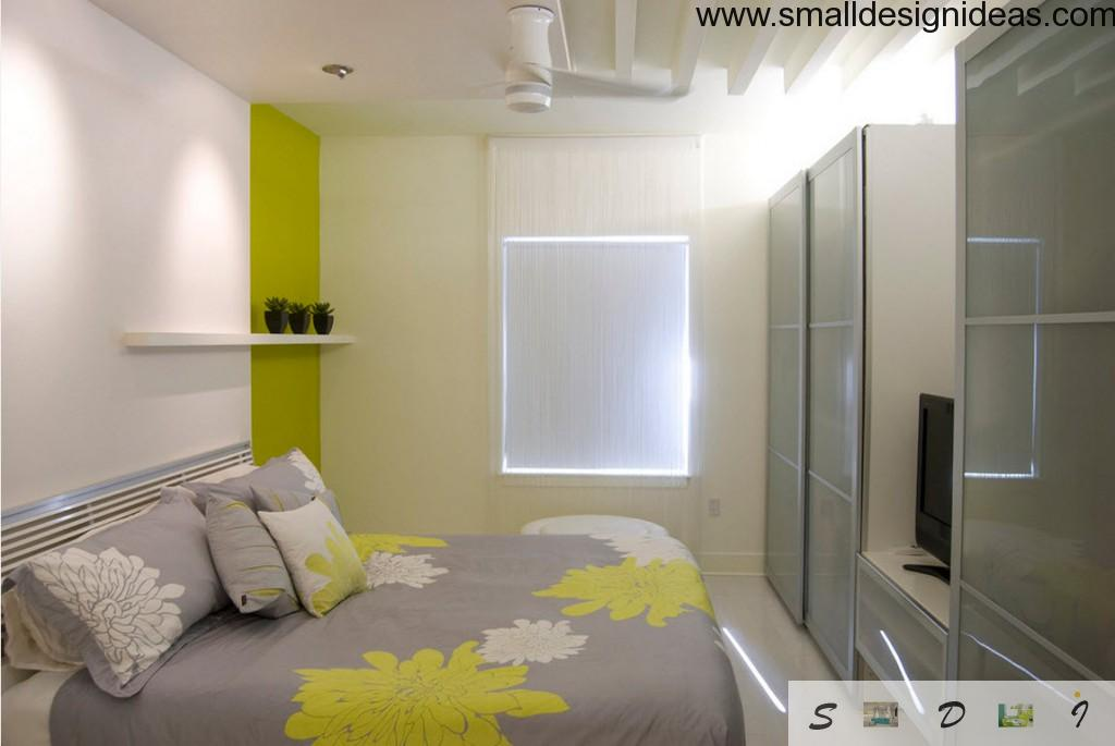 Small Design ideas for smal bedroom with bright spots in interior