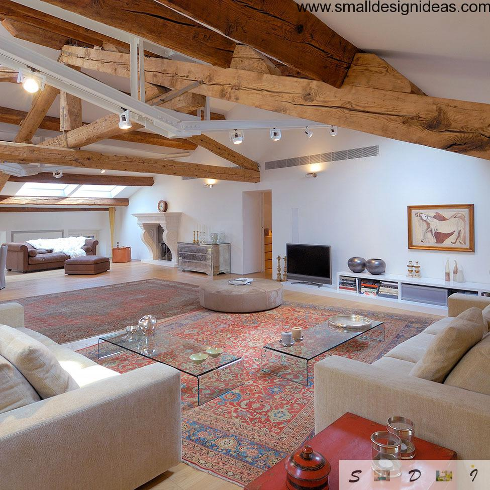 Classic Loft zoning example in a luxurious apartment