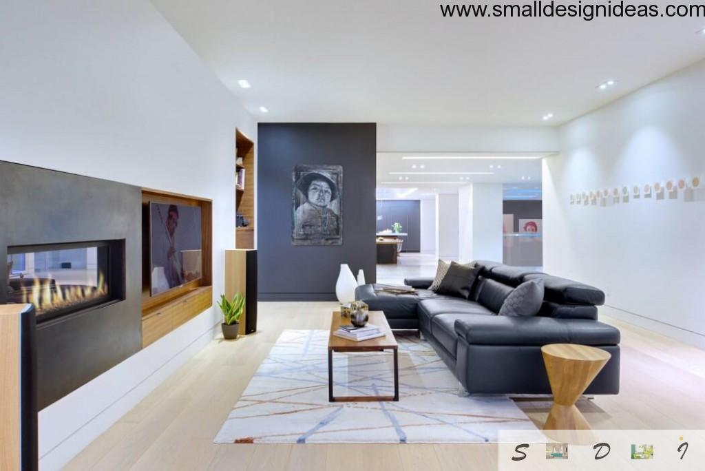 Art-decor and Scandinavian styles in one large living room