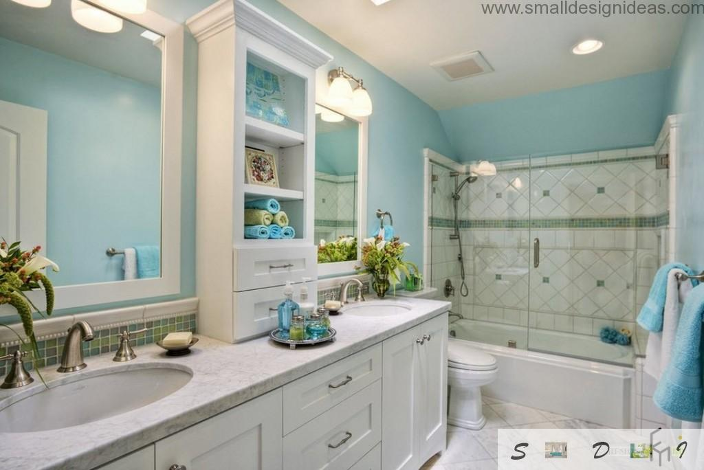 Nice design idea for nethroom with shower arrangement in classic style