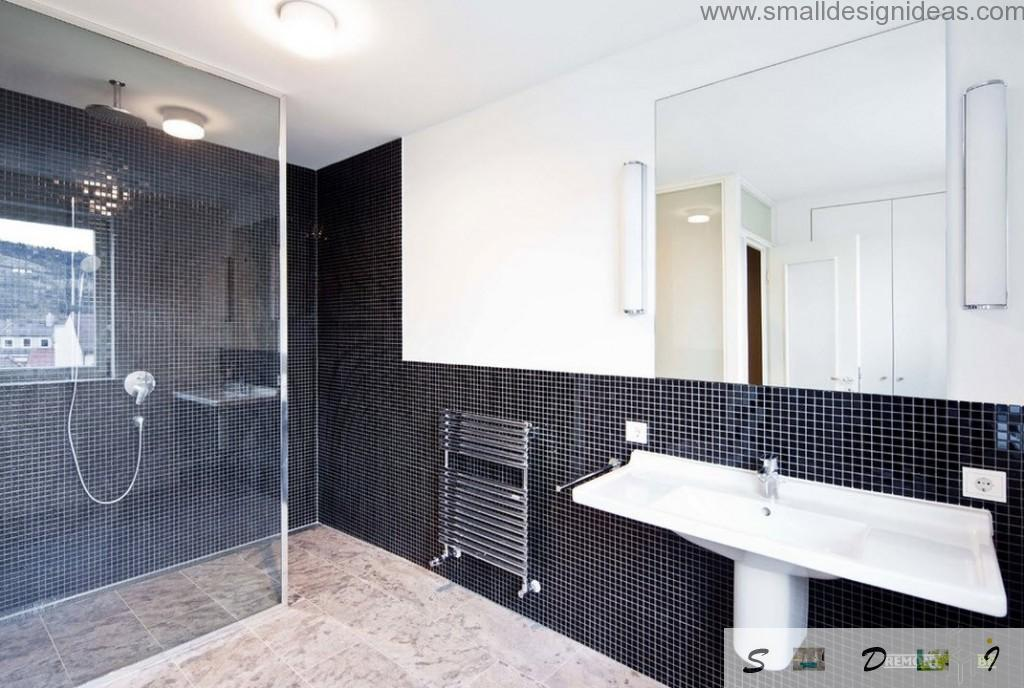 Black mosaic tile in the modest contemporary bathroom interior