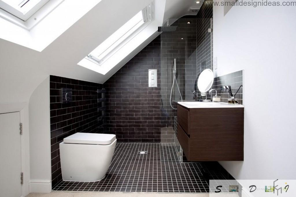 Vaulted ceiling at the bathroom with black wall and floor