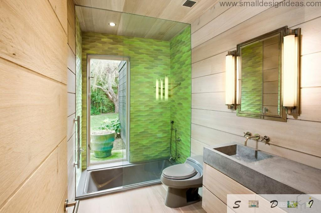 Modern Bathroom Design Ideas. Green decoration of the shower cubicle with glass partition and the door at the backyard