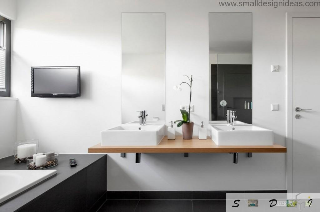 TV-set and a plant pot in the modern interior of the bathroom with wooden countertop