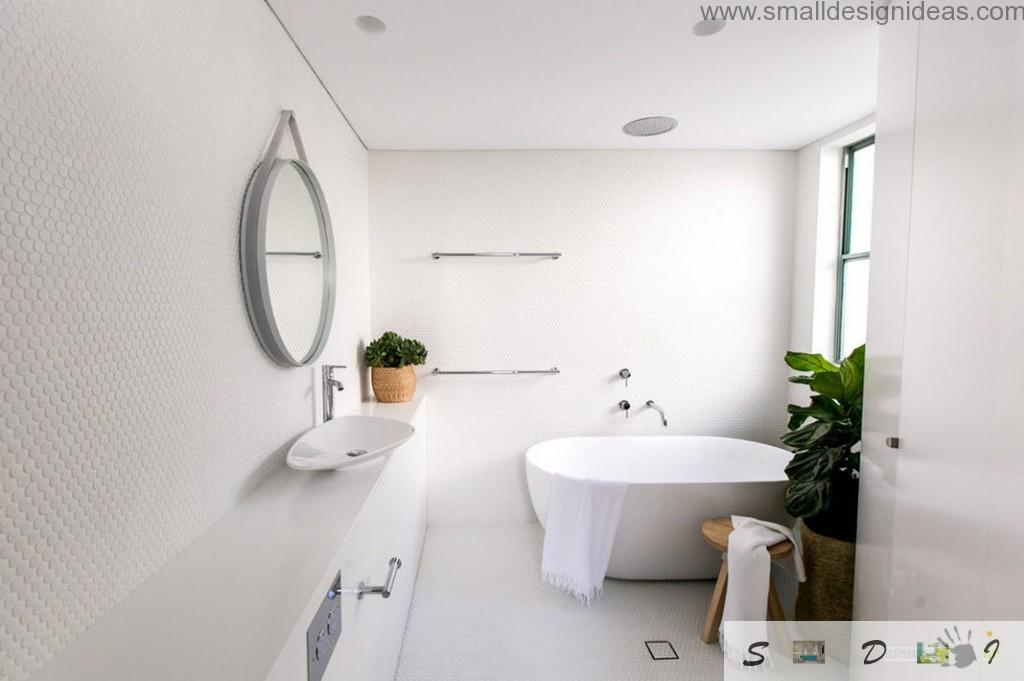 Elusive imponderable white bathroom design diluted with green plant in a pot