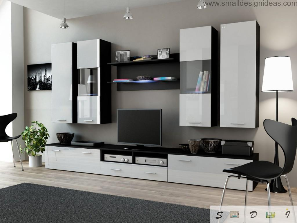 Black and white interior idea for the small but roomy living room