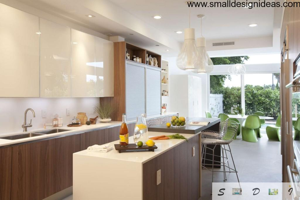 Ecodesign Interior Design Style in the kitchen