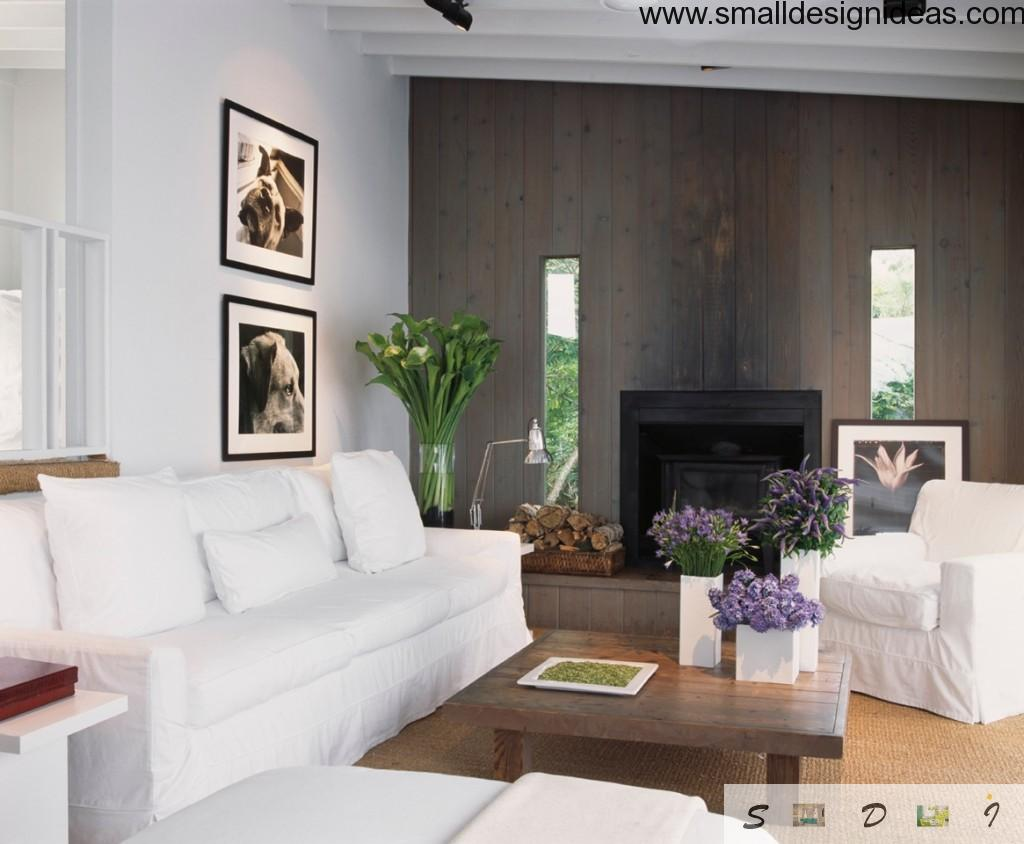 The paradigmatic ecological interior of the living room
