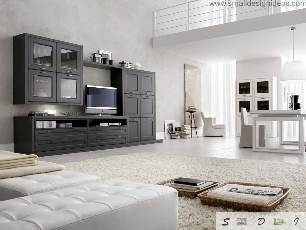 Black and white interior with the silver colored carpeting