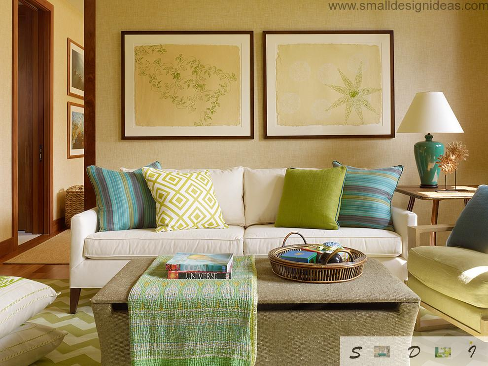 Pictures and sofa with colored cushions in the small living room