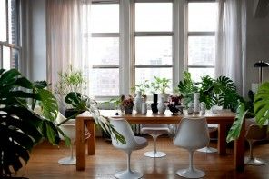 Green gallery for relaxing. Ecodesign Interior Design Style