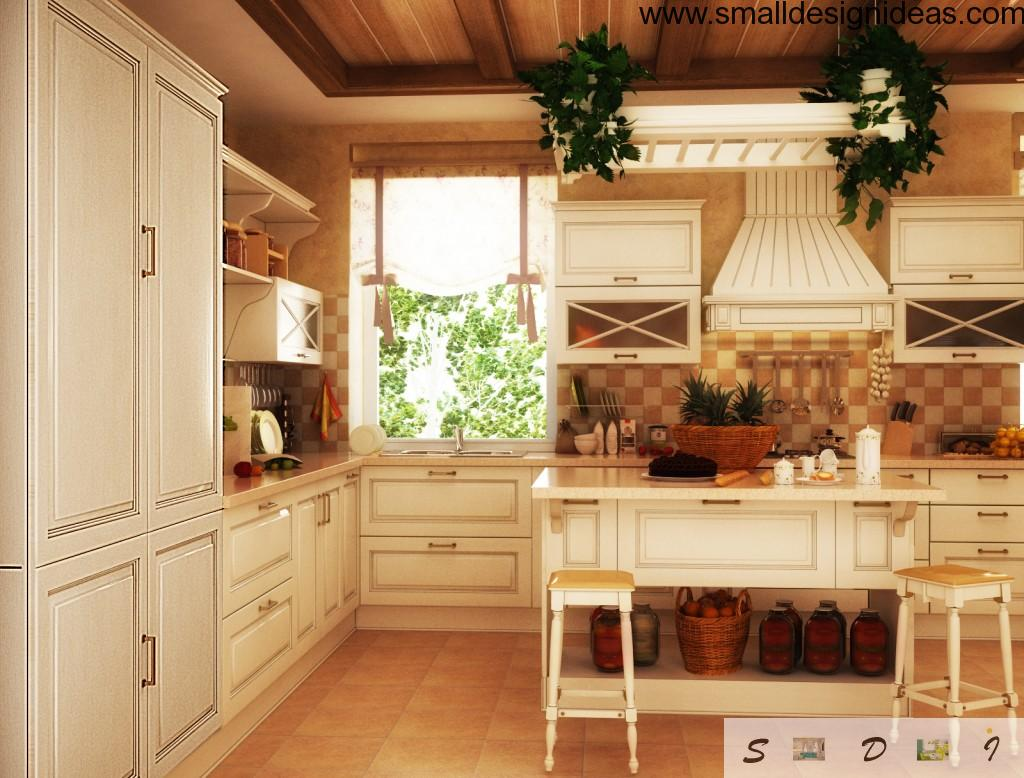 white wooden trimming at the country kitchen design with greenery decoration and styled exhaust hood