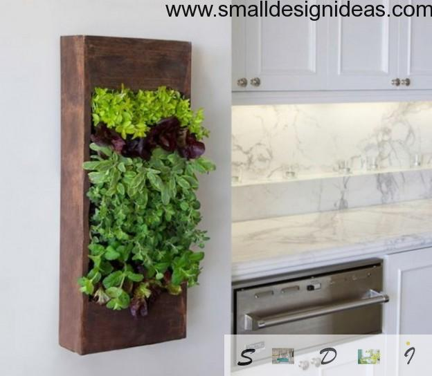 Green wall in the eco designed kitchen