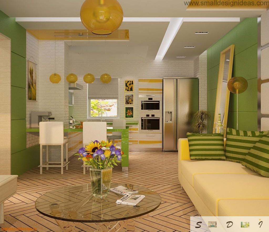 Private House Kitchen Design Ideas. Small kitchen combined with living room in joyful yellow and green color combination