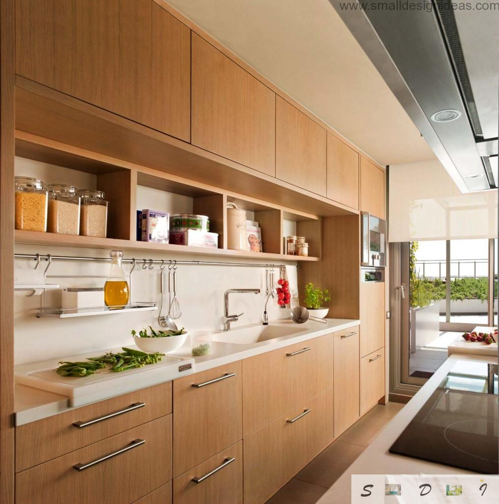 Kitchen Walls Color Ideas. low-key color scheme for the private house kitchen full of daylight