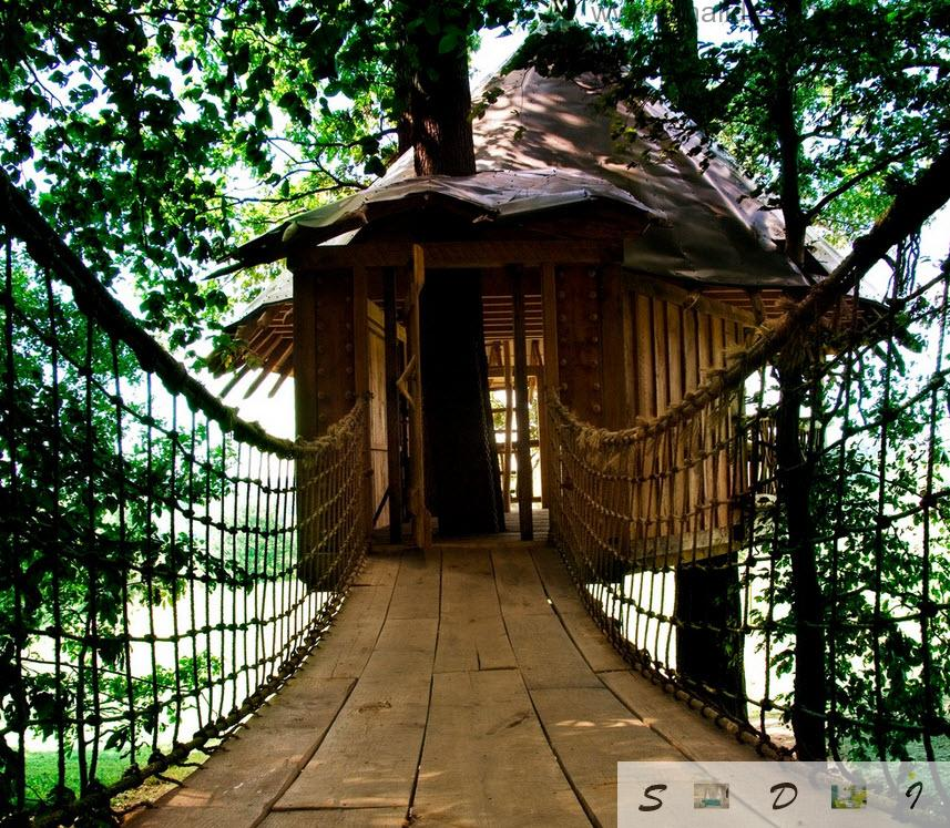 hat looking roof of the tree house and suspended pathway design idea