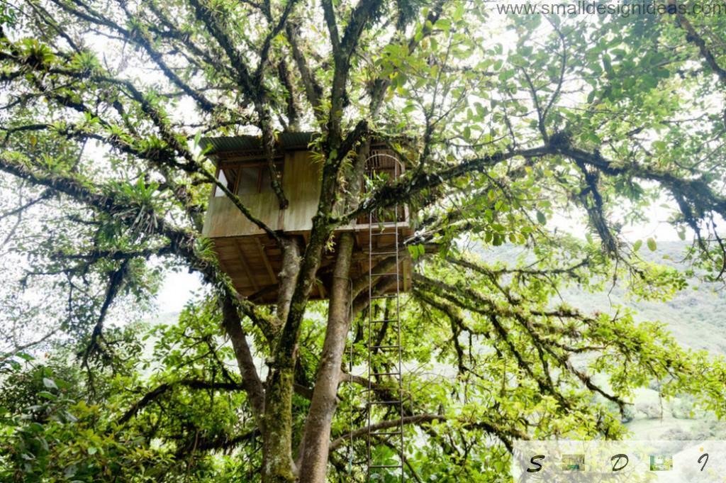Green tree and the bright joyful tree house
