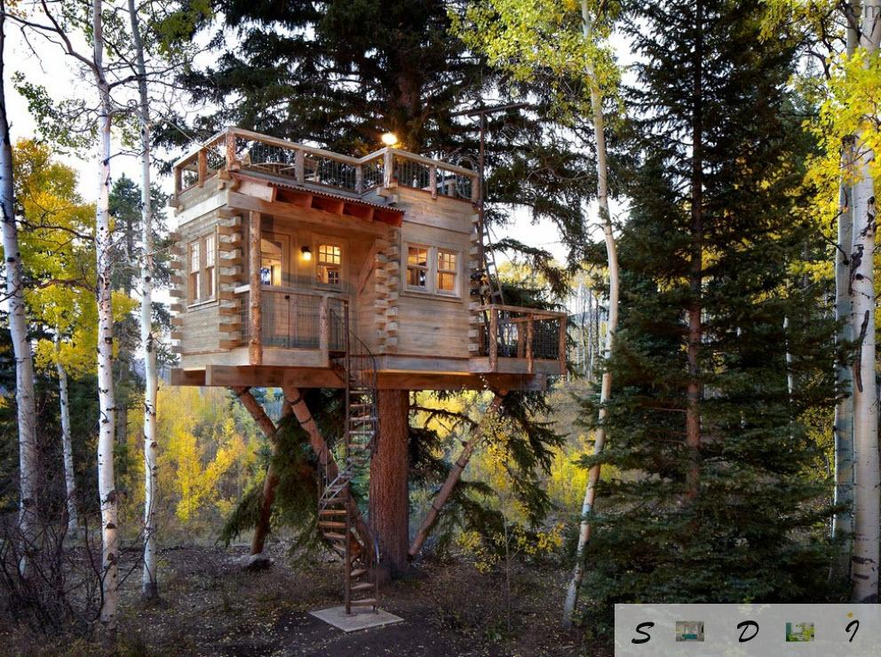 Neat timber light design idea for the tree house