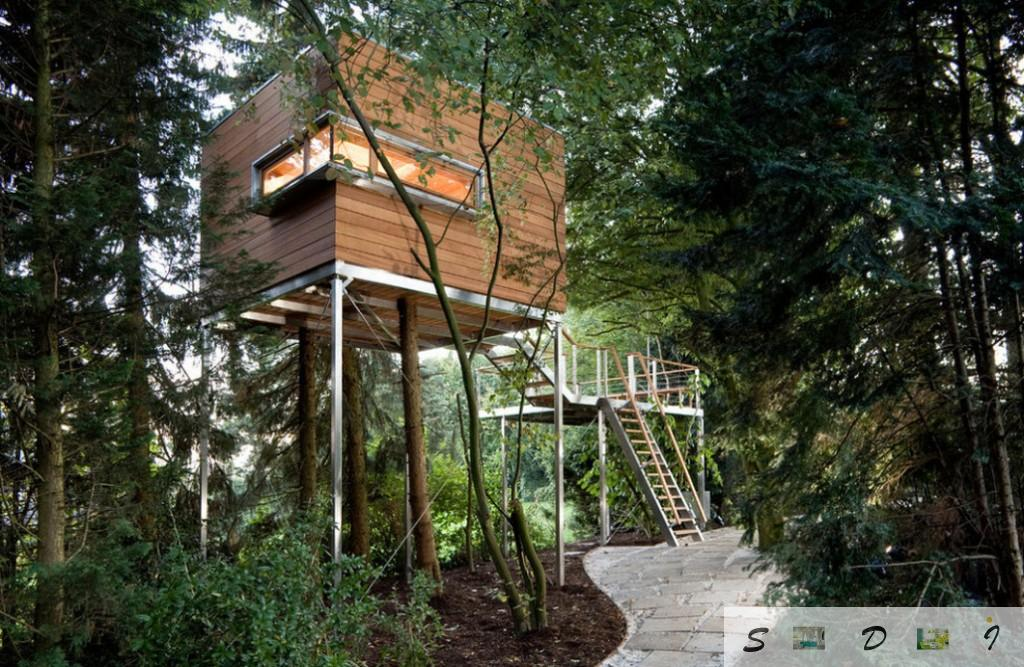 Original modern hi-tech design of the tree house with unusually formed window