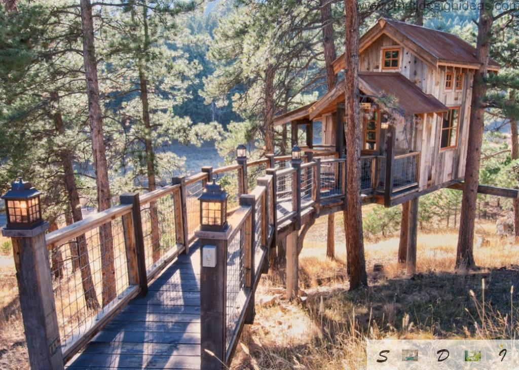 Tree house with the suspended pathway to the house