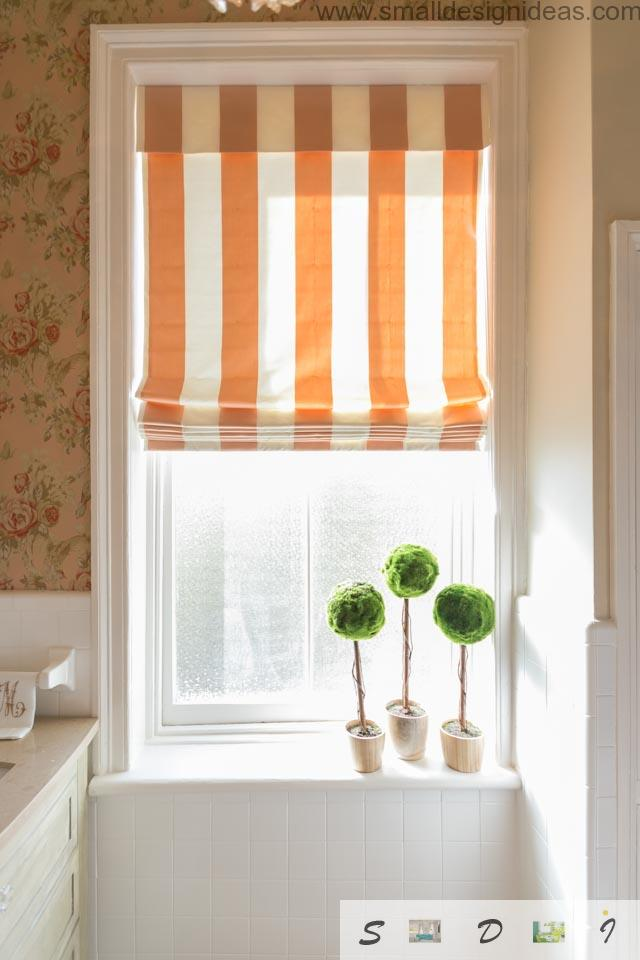 Classic Style Small Bathroom Remodel ideas with Roman blinds