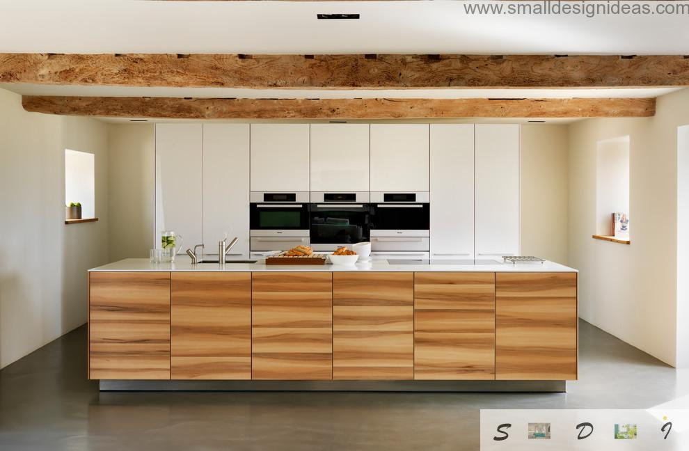 Wooden panels as surfaces and coverings for the kitchen appliances
