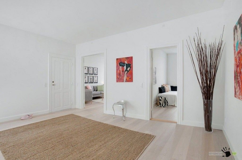 Scandinavian Style Apartment Room Decorating Ideas of the spacious living