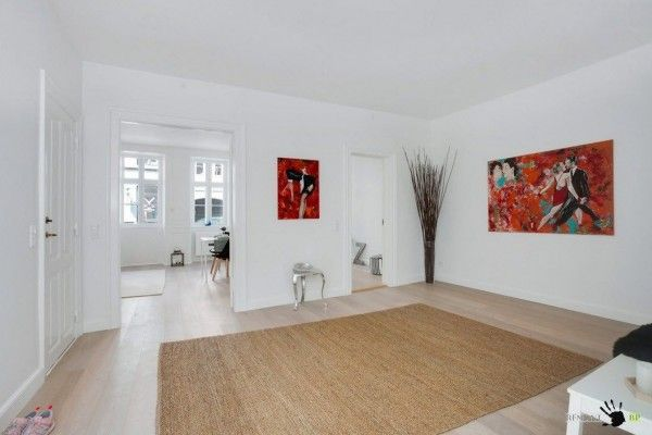 Studio living room with wall zoning in the Danish apartment