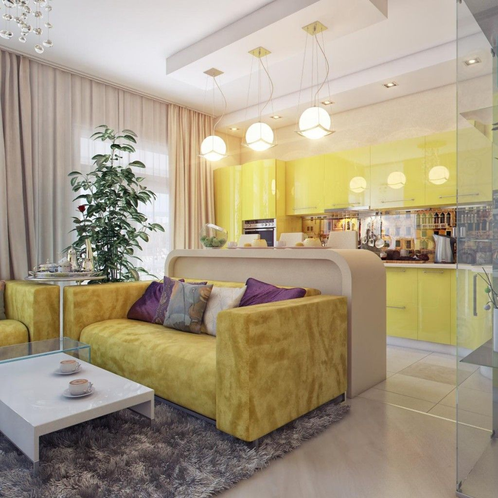 Modern Living Room Zoning Methods Collection. Rest zone and the kitchen divided by furniture