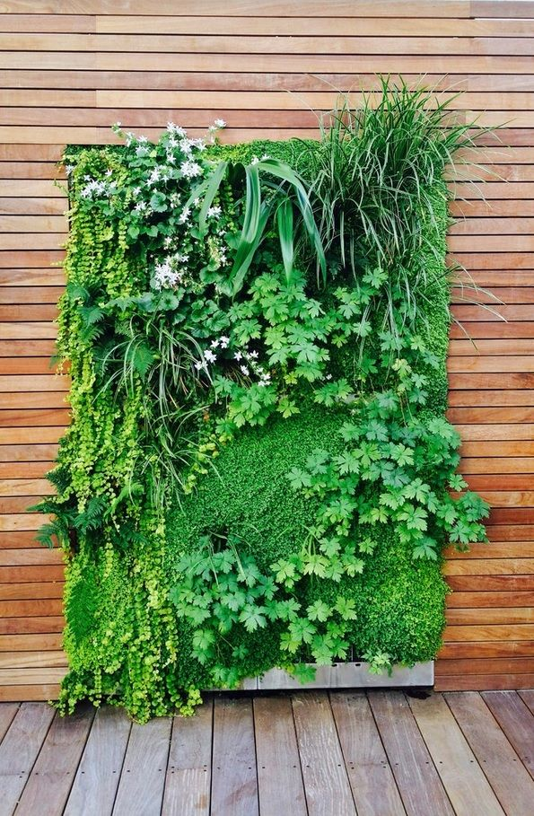 Plant Terrace Landscape Decoration Methods. Phytowall in the facade of the building