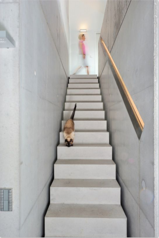 Modern Interior Staircase Materials Photo. Minimalistic design is also trendy