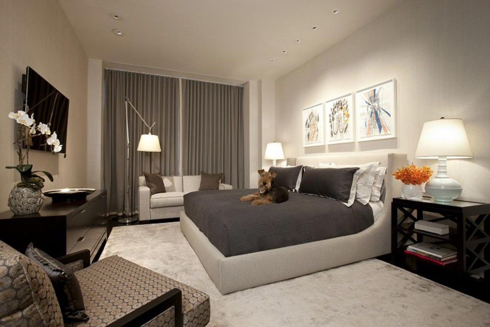Bedroom Interior Furniture Set Programme Ideas. Dog likes the royal bed with gray covering