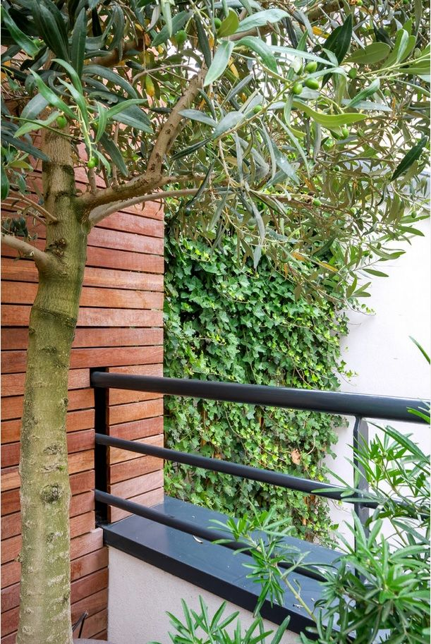 Plant Terrace Landscape Decoration Methods. Blend of wood and plants at the terrace balcony
