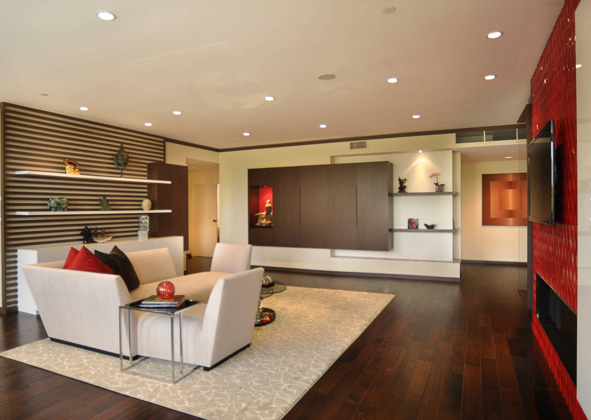 Storage Systems Variety for the Living Room. Red and black accent wall in the room with open shelving