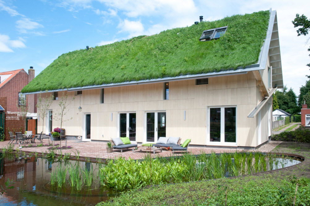 Grass Roof House Bold Design Project. Ecological style blends the landscape