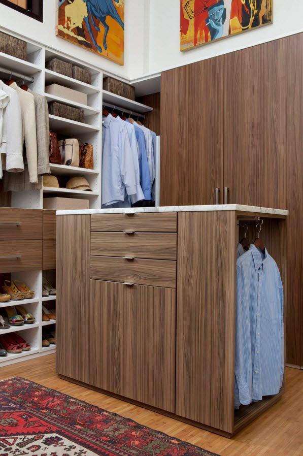 Walnut Furniture for the Modern Interior Decoration. Dressing room woth combination of colors