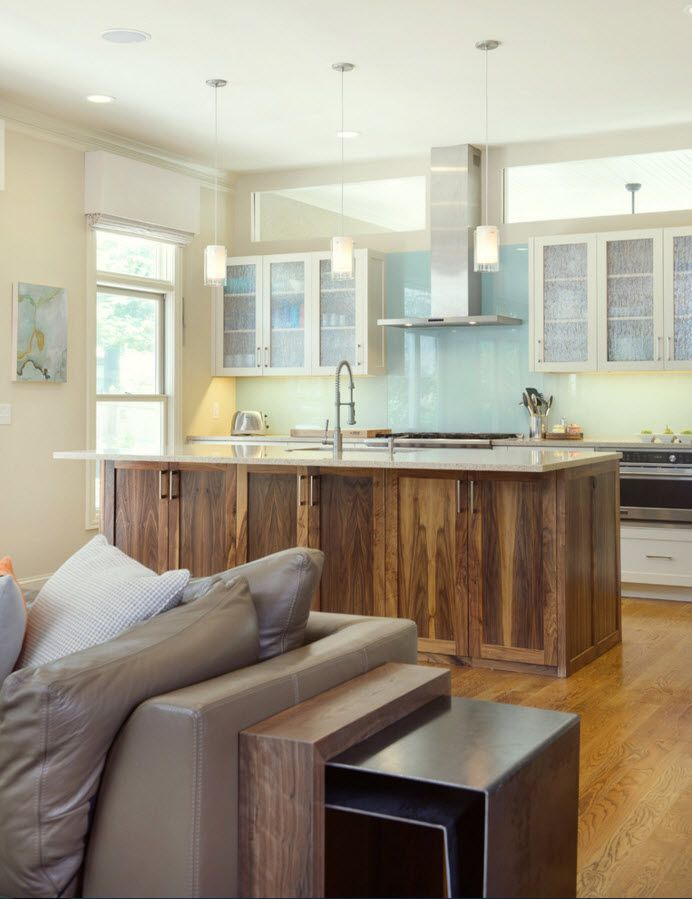 Walnut Furniture for the Modern Interior Decoration. Nice kitchen installation of furniture in different color solutions
