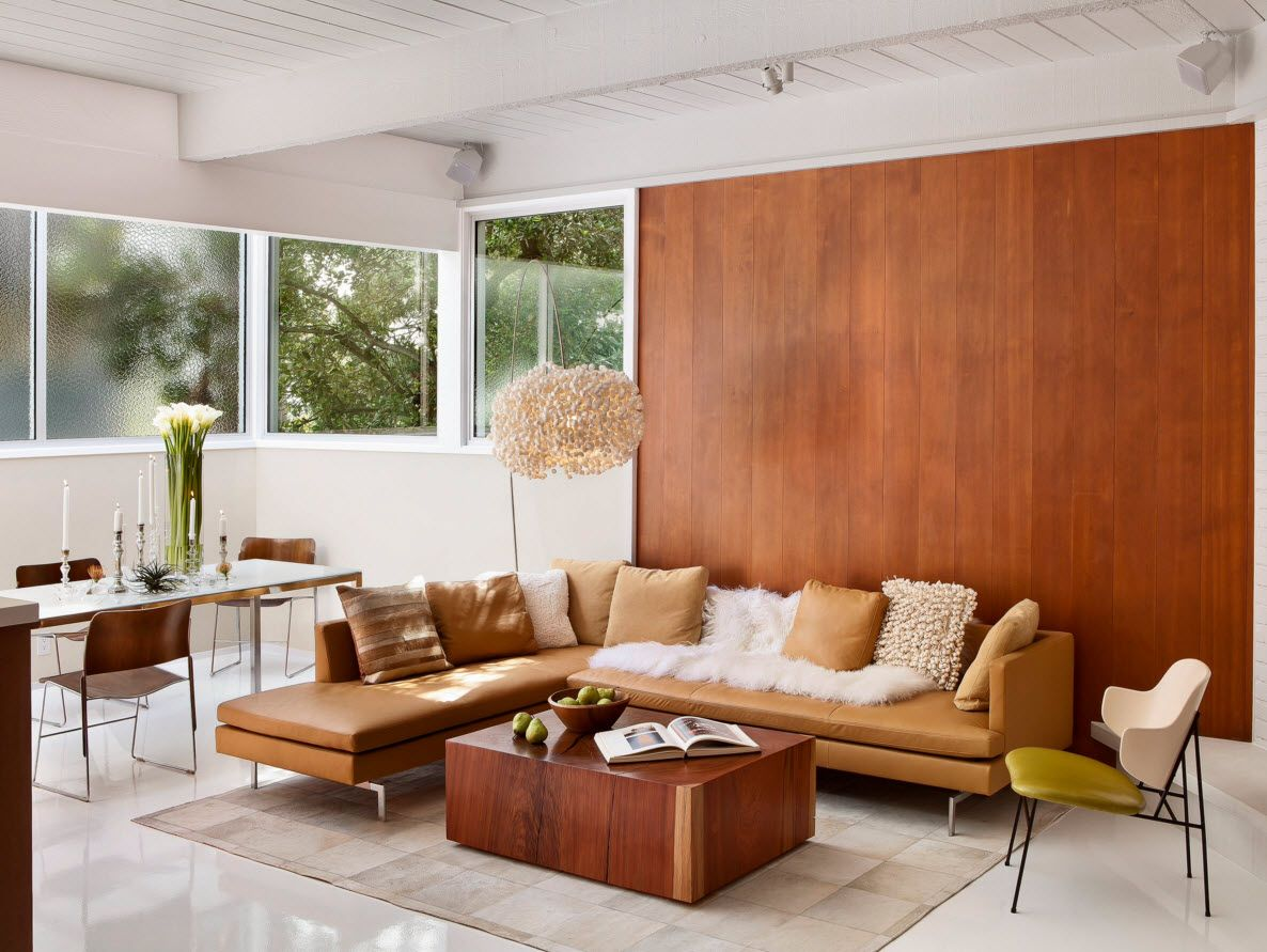 walnut accent wall in the living room on the first floor of the private house
