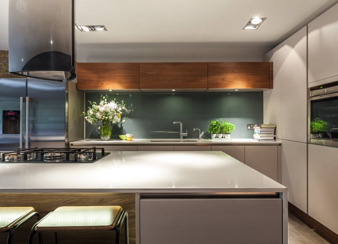 Walnut Furniture for the Modern Interior Decoration. Hi-tech style with notes of naturalness in the kitchen