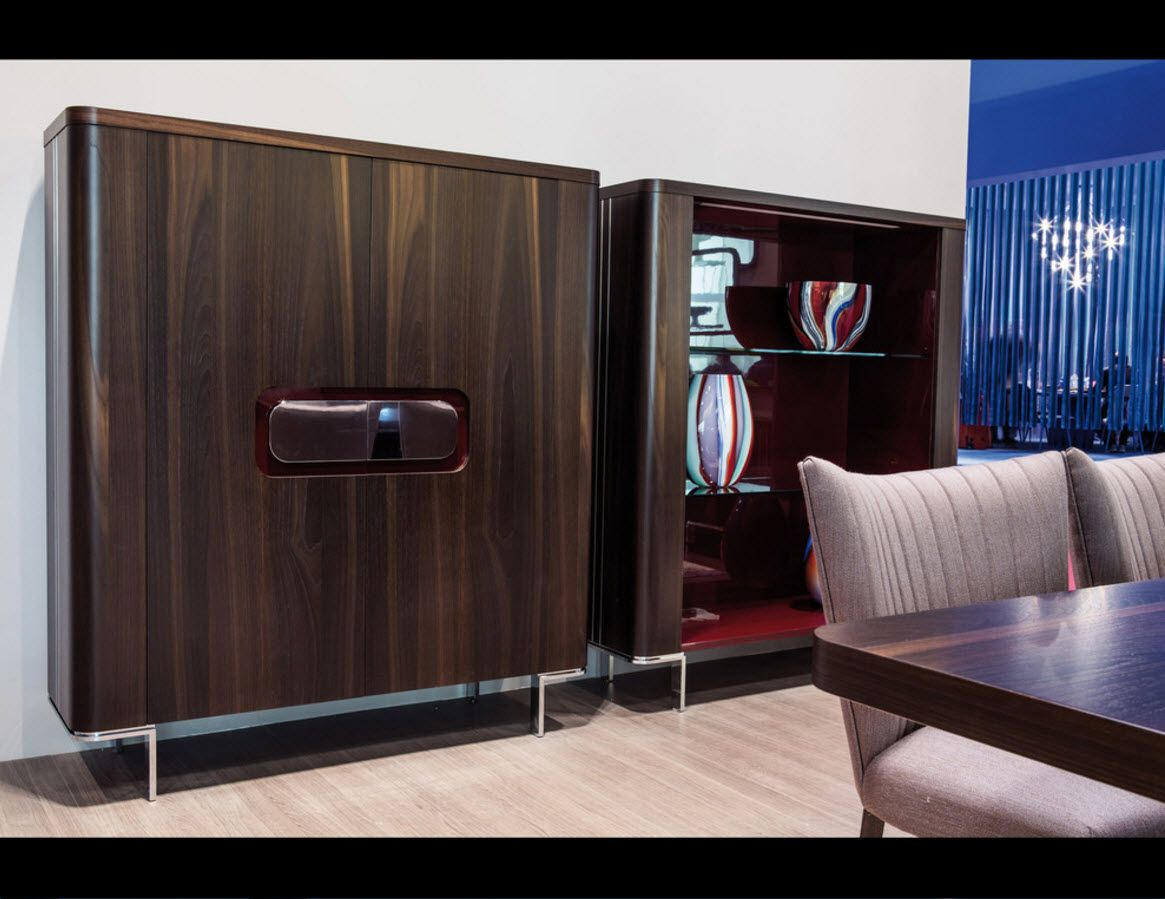 Walnut Furniture for the Modern Interior Decoration. Dark closet in the spacious living