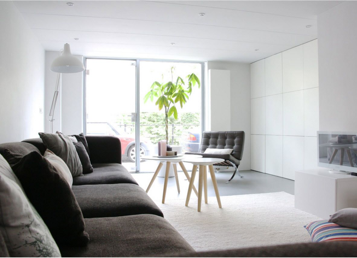 Dark brown furniture for the white interior of the living room with ecological touch of the plant in the pot