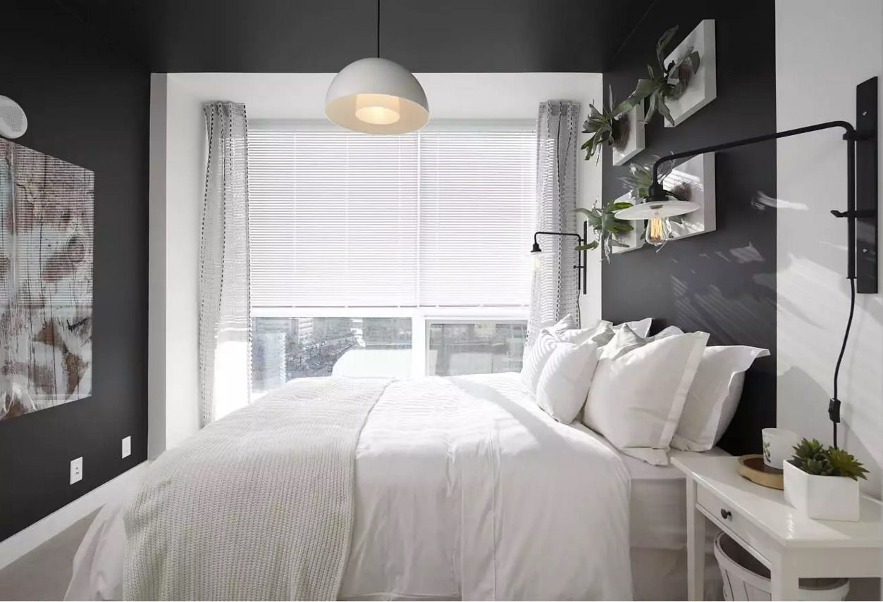 Small Bedroom Decoration Trends Photo. Dark wall finishing and the contrasting light bed