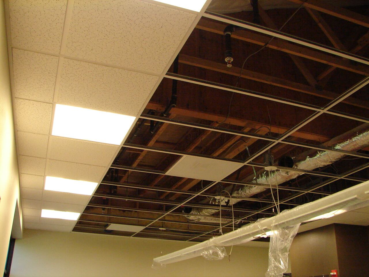 Dropped Ceiling Description