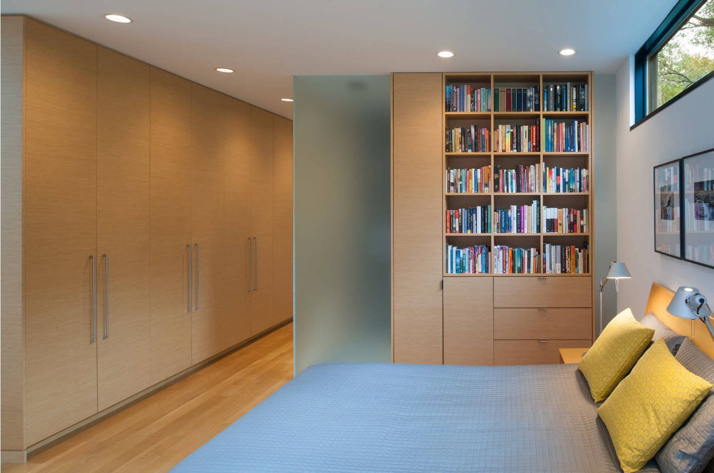 Library-bedroom zoning ideas