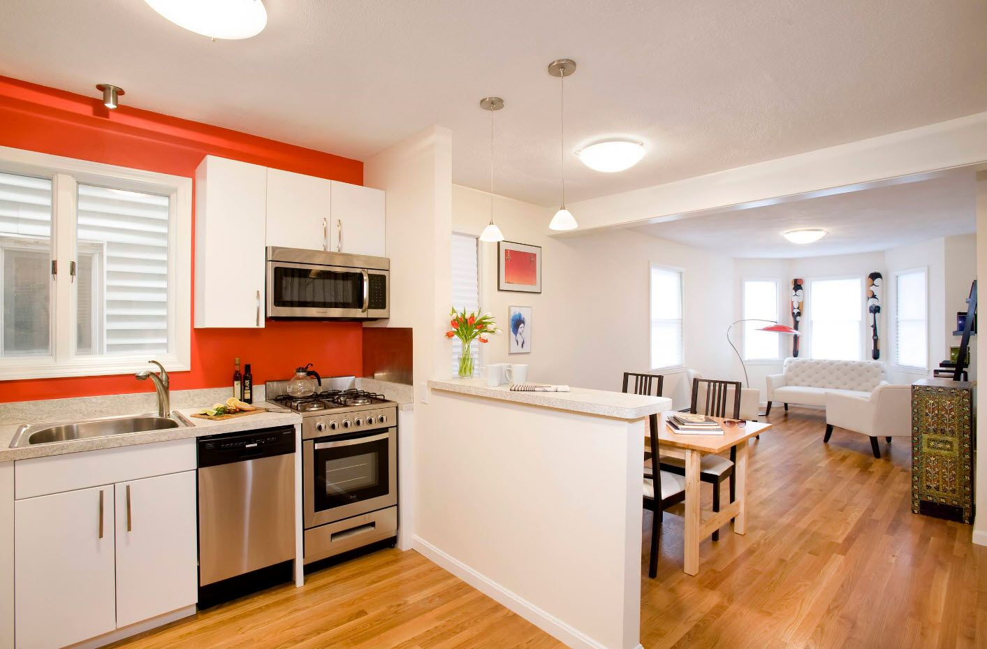 One Bedroom Apartment Design Trends with Photos. Zoning is the Forte of modern interiors