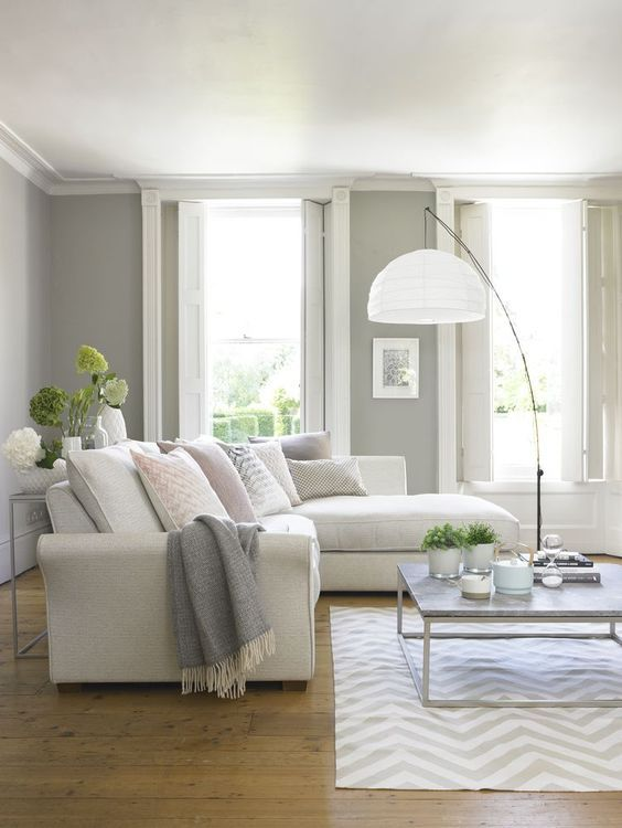 gray classic for the light interior of the living